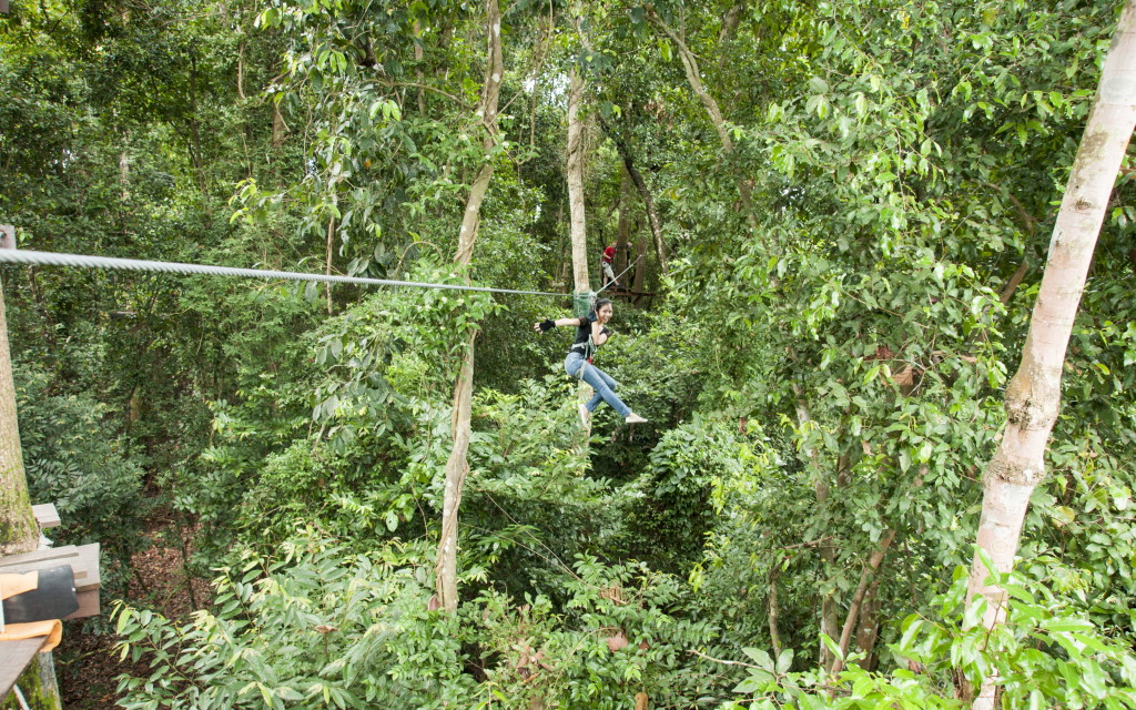 Zip lining is a fun experience!