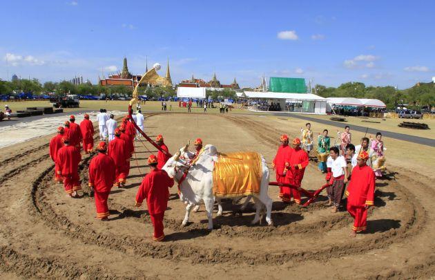 Royal Ploughing